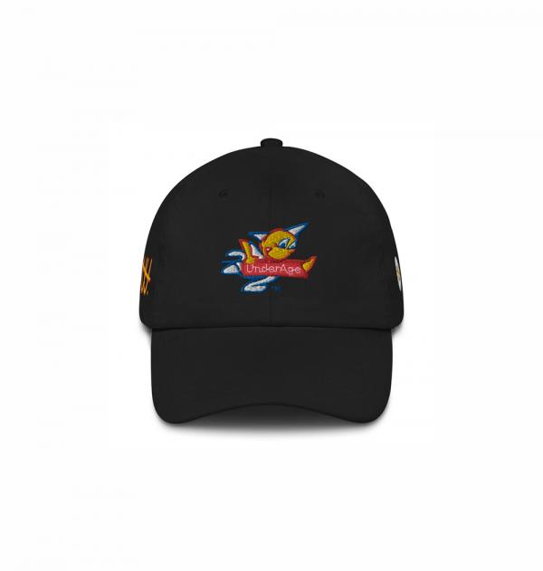 Fast Logos Hat